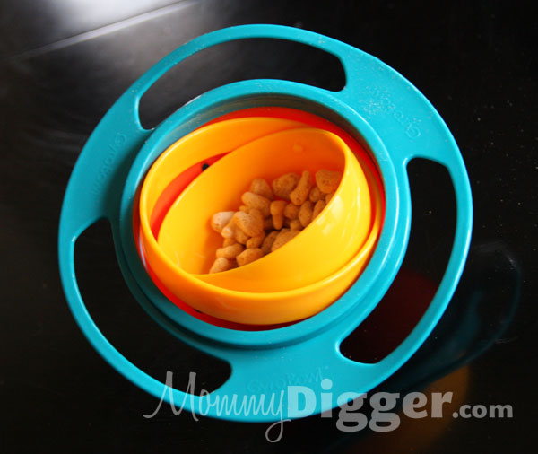 Gyro Bowl No Spill Bowl Review