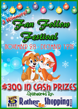 Fan Follow Festival