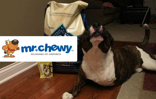 Mr. Chewy Review and Giveaway