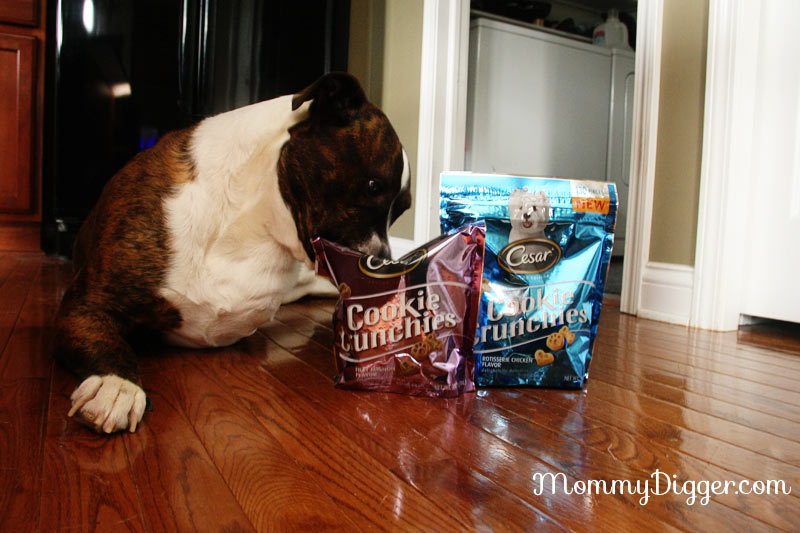 Cesar Cookie Crunches Review