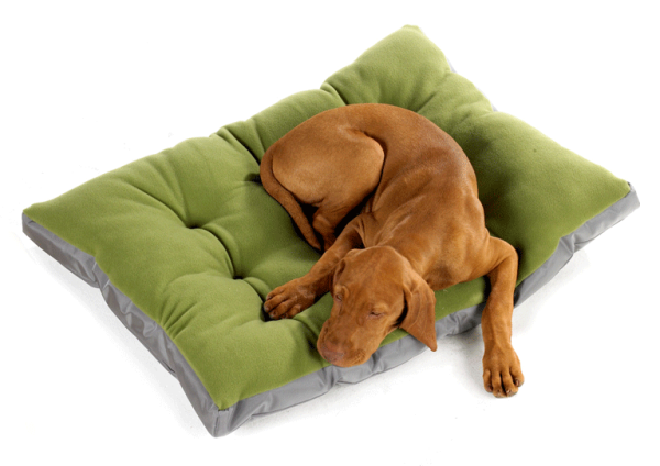 Eco Futon Dog Bed