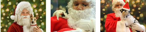 PetSmart Santa Photos