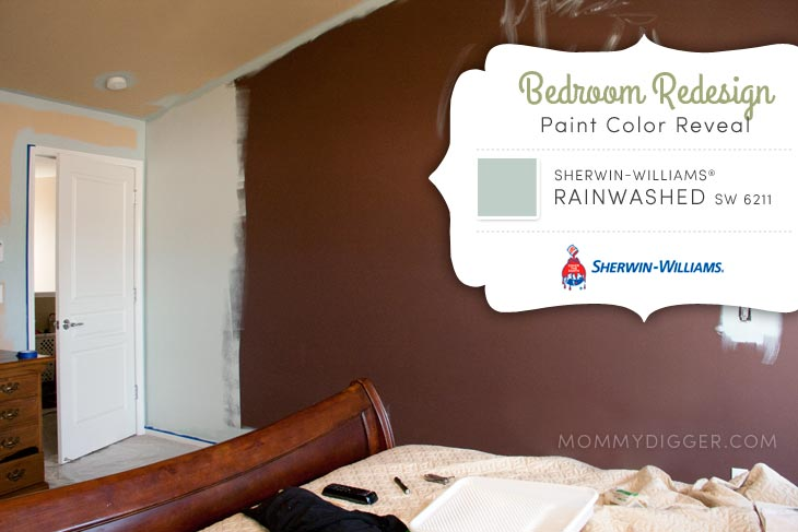 Sherwin-Williams Rainwashed Master Bedroom